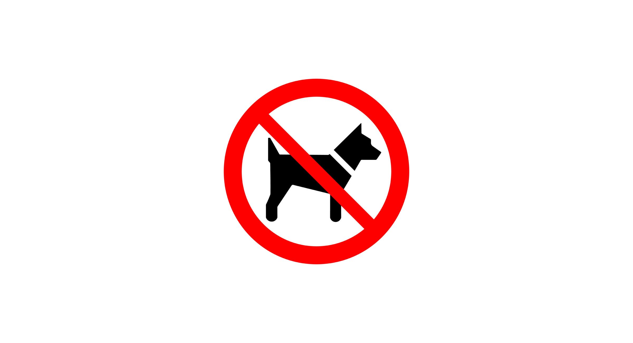 No Pets Kingaroy BaconFest does not allow dogs or any other pets to enter the Festival Precinct. We apologise for any inconvenience this may cause and we are working on ways to minimise the inconvenience this may cause to your BaconFest celebrations. It is our recommendation that you leave your pets at home or with loved ones or to arrange a pet sitter from one of our local providers.